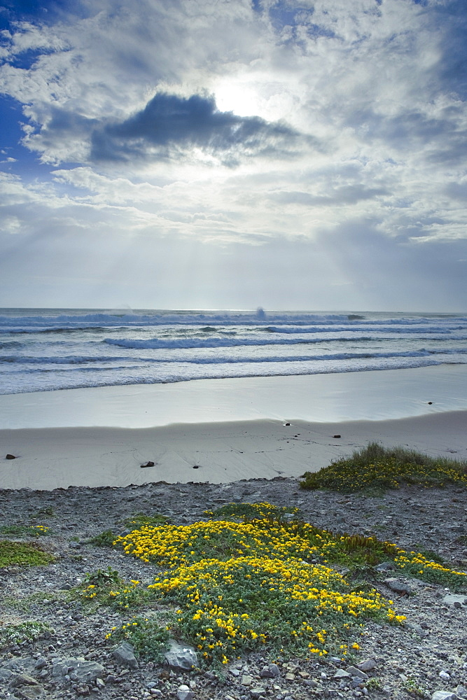 Los Lances Beach Along Costa De La Luz, Tarifa, Cadiz, Andalusia, Spain
