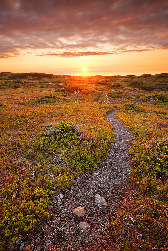 View Of Lookout Trail At Sunset, Gros Morne Np, Newfoundland, Canada