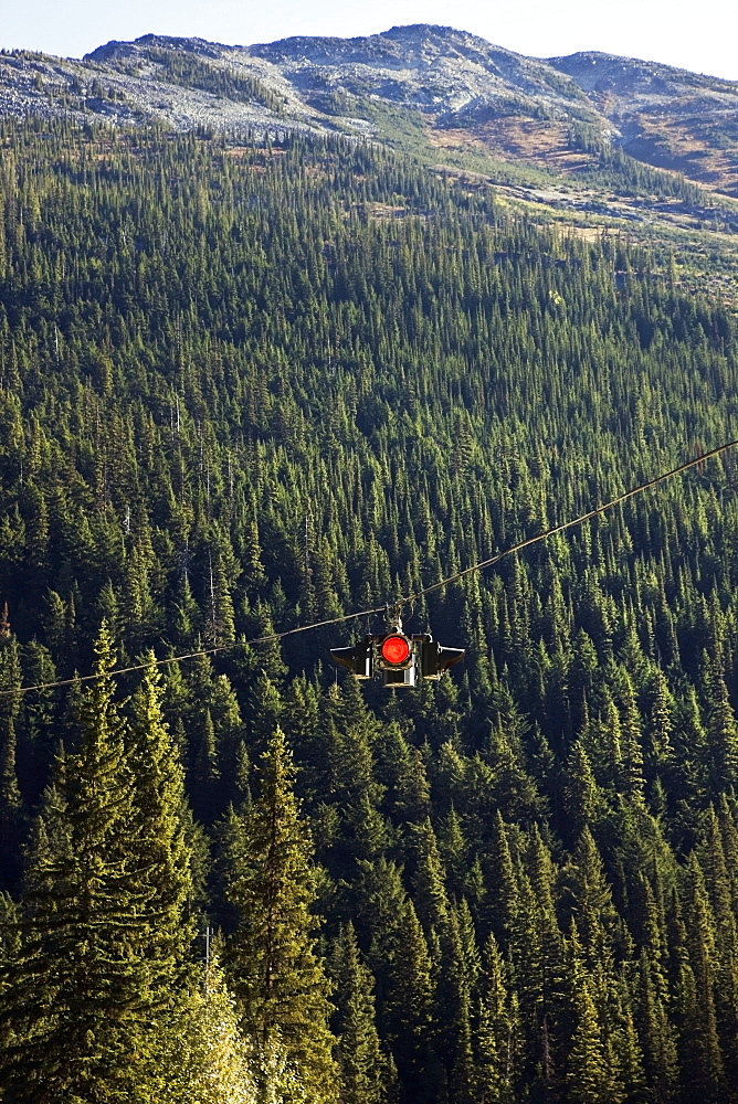 A red traffic light hung on a cable above a forest, Alberta canada