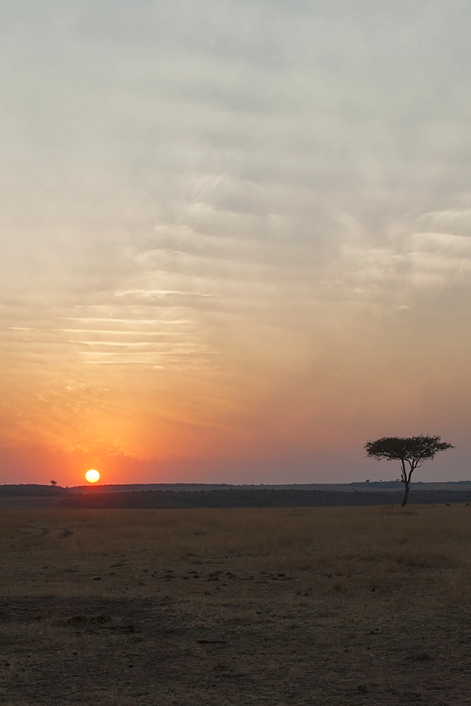 Sunset over the landscape in the maasai mara national reserve, Maasai mara kenya