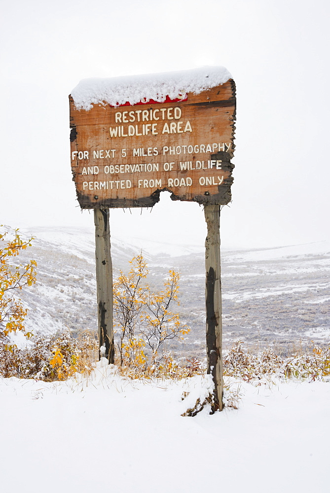 Restricted area sign entering sable pass covered in snow in autumn denali national park, Alaska united states of america - 1116-41863