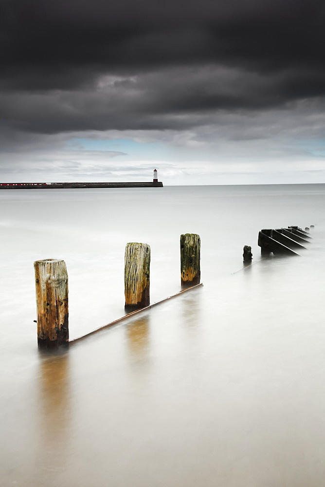 Wooden posts in the tranquil water, Berwick northumberland england - 1116-42093