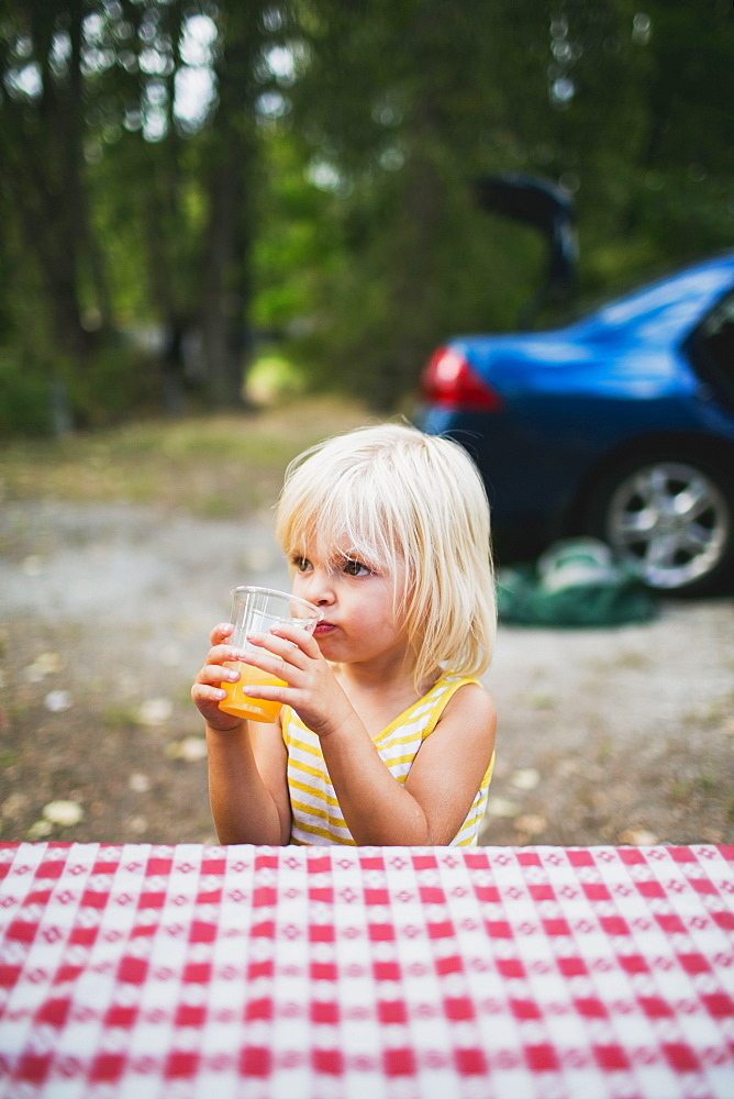 A Young Girl Sits At A Picnic Table Drinking, Peachland, British Columbia, Canada - 1116-42302