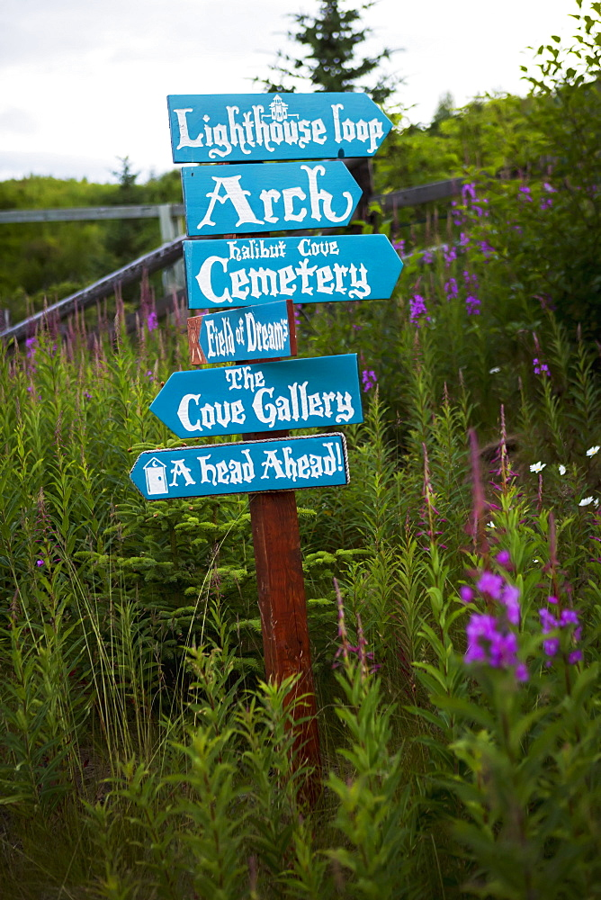 Landmark Sign Surrounded By Wildflowers In Halibut Cove, Kachemak Bay, Alaska, United States Of America