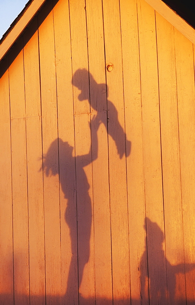 Agriculture - Silhouette on the side of a barn in late afternoon light of a farm woman, and mother, tossing her young child into the air while their dog watches / Northwest Missouri, USA. - 1116-42726