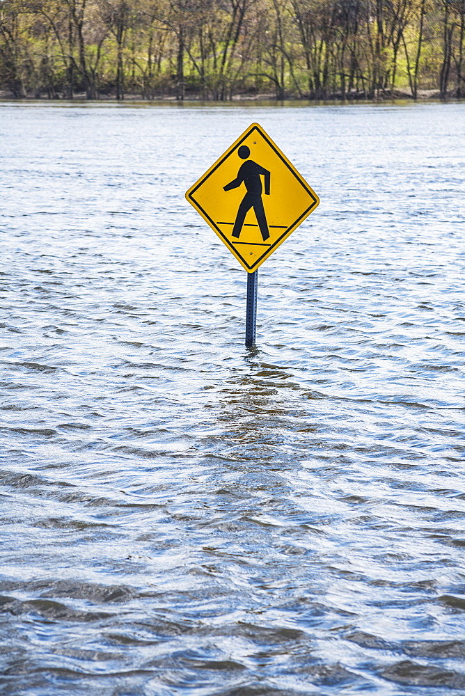 Pedestrian Crossing Sign In An Area Flooded By A River, Connecticut, United States Of America