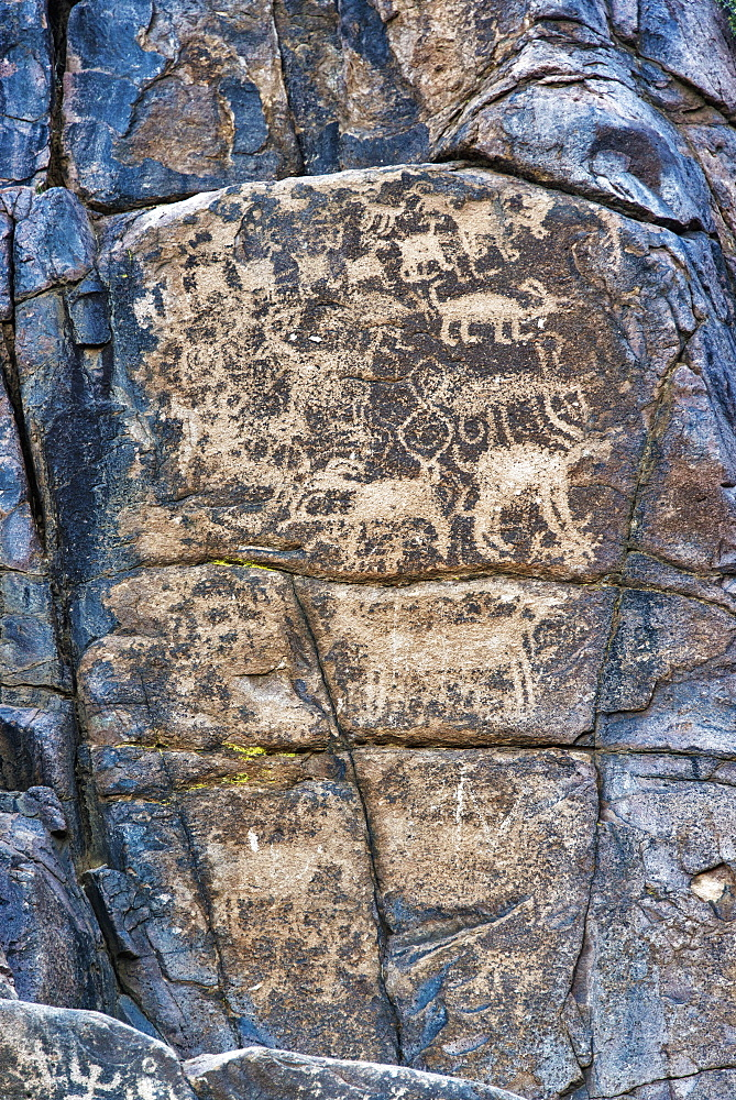 Prehistoric Rock Art, Superstition Mountains, Tonto National Forest, Arizona, United States Of America