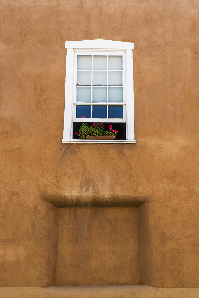 Flowers In A Window In The Back Of A Historic Church, Velarde, New Mexico, United States Of America