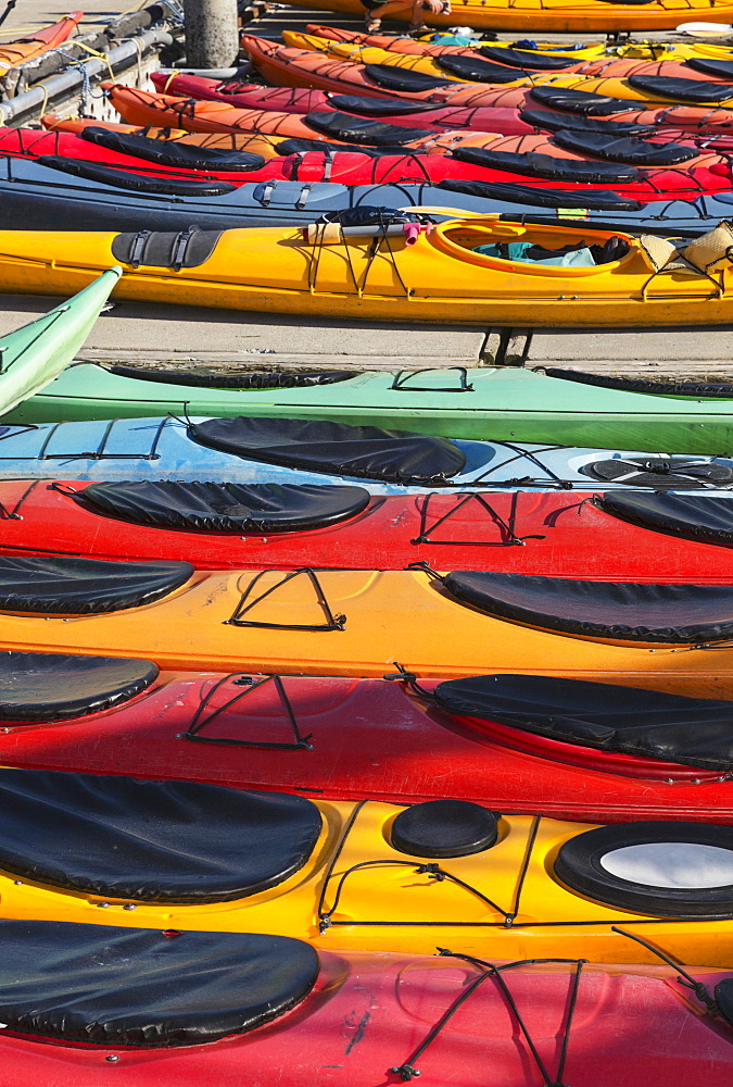 Multi-Coloured Kayaks Together At Boat Dock, Prince William Sound, Valdez, Alaska, United States Of America