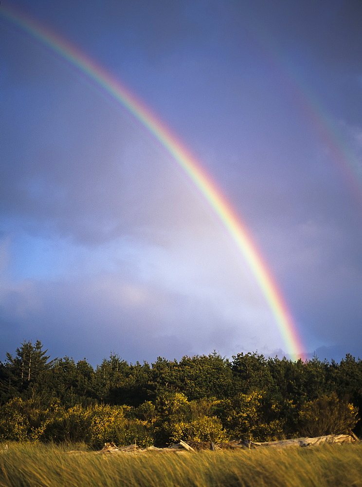Rainbows Are Common Along The Oregon Coast, Florence, Oregon, United States Of America