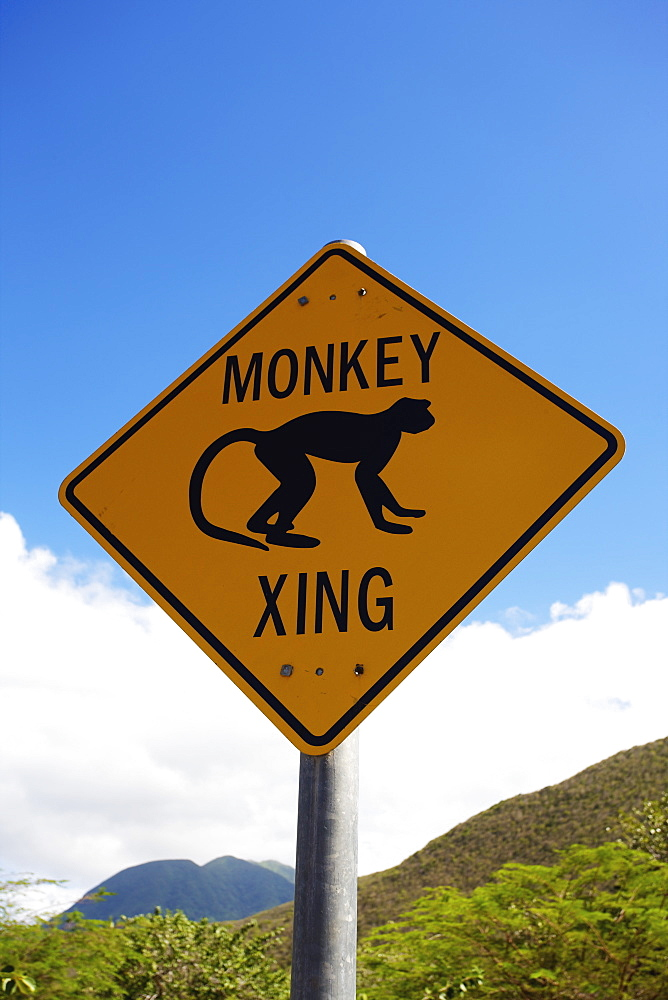 Monkey Crossing Sign, Nesbit Beach, Nevis