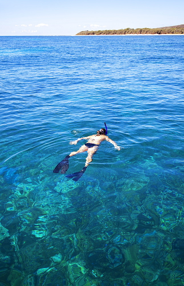 Hawaii, Lanai, Young Woman Swims Near Ocean While Snorkeling.