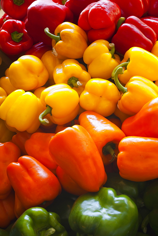 Peppers For Sale At A Roadside Stand, Dunham, Quebec, Canada