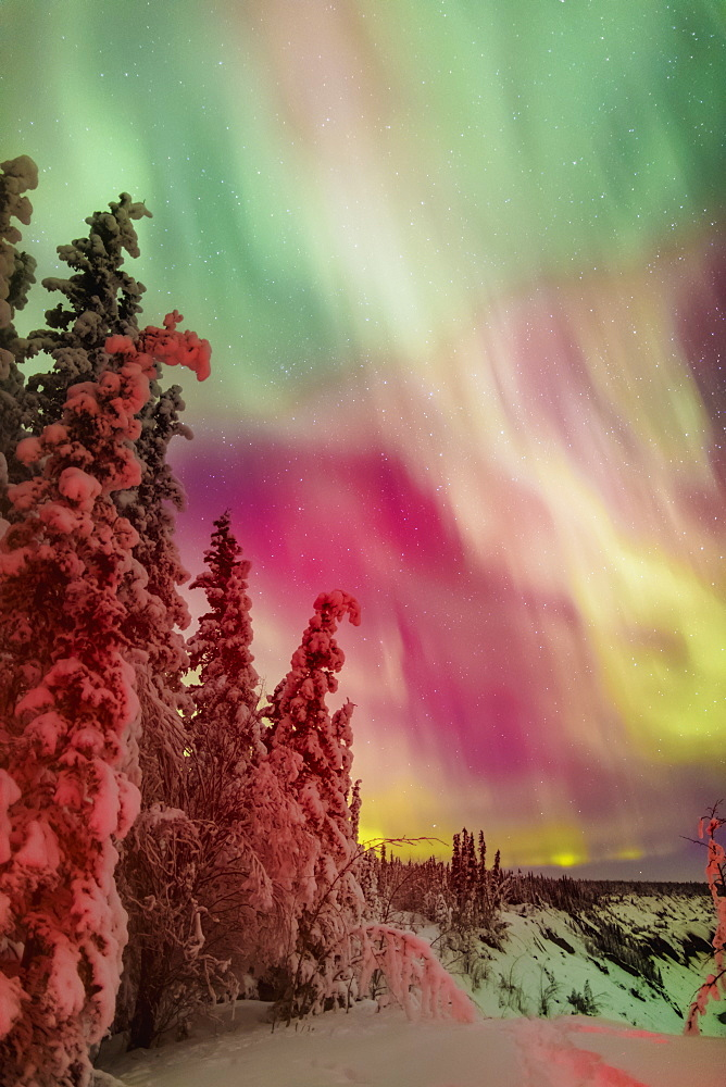 Colorful Northern Lights Over Copper River Valley Near Glennallen, Southcentral Alaska, Winter
