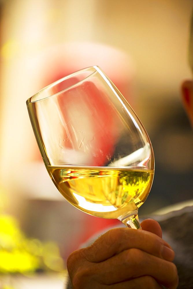 Drinking Local Wine, Valletta, Malta