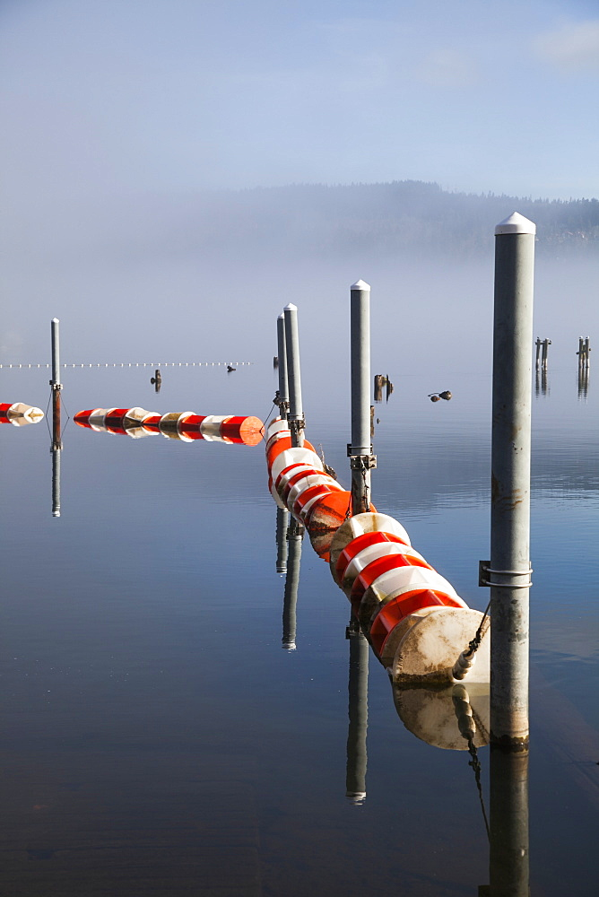 Buoys And Pilings On Foggy Lake, Bellingham, Washington, United States Of America