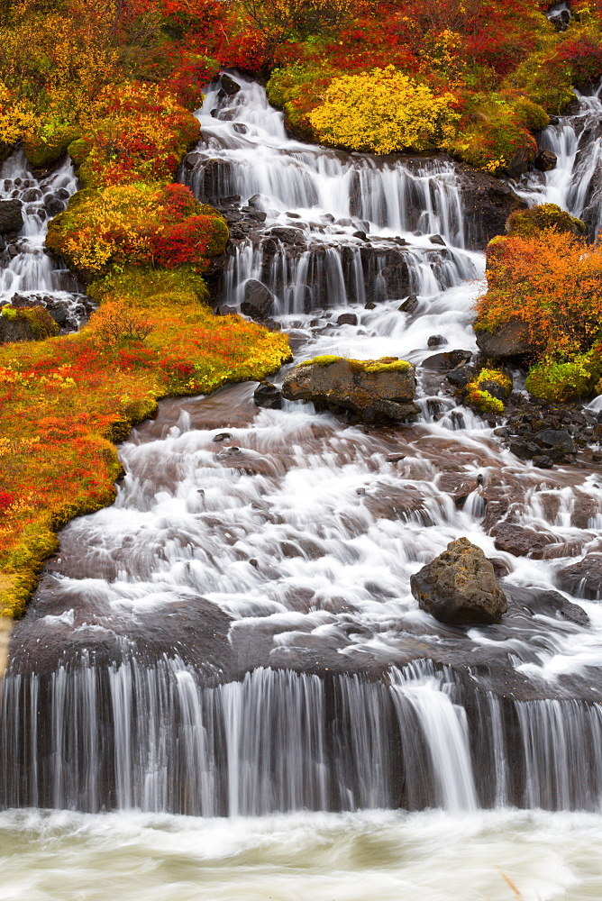 Hraunfossar Waterfalls And Autumn Colours, Iceland