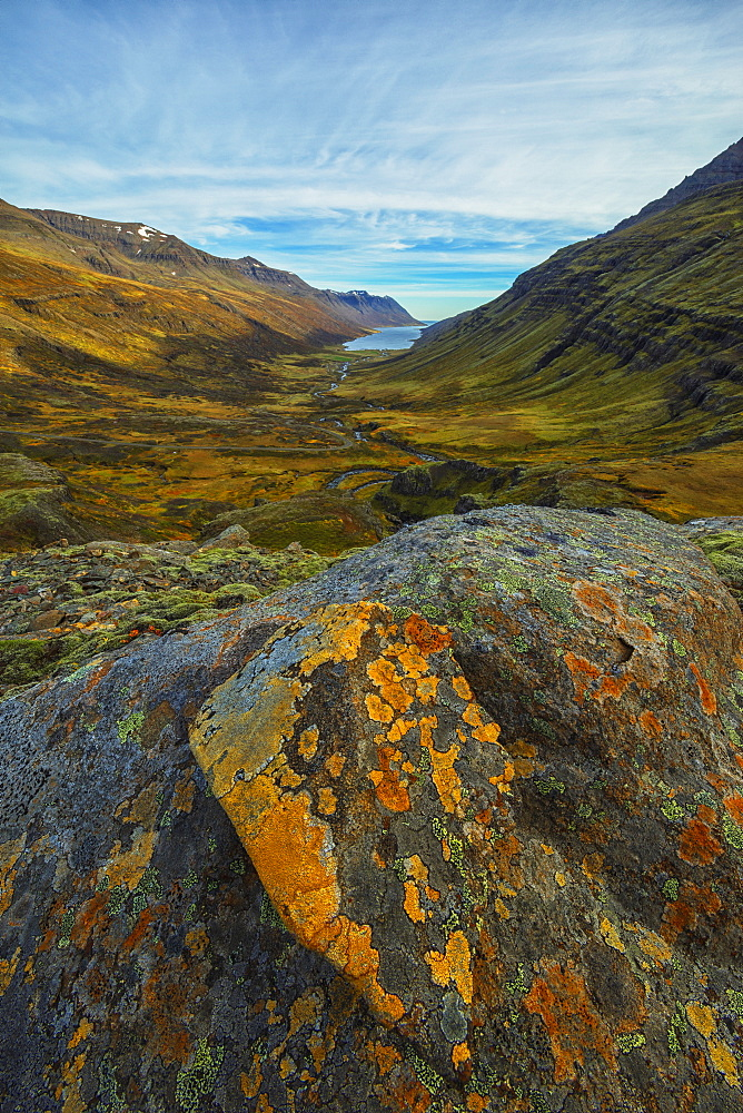 Mjoifjordur Is A Fjord On Iceland's Eastern Coast, A Lichen Covered Rock In The Foreground While The Fjord Extends Out Behind It, Iceland