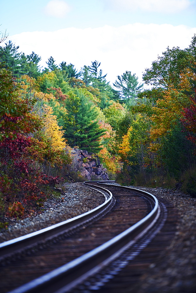Railroad Tracks Through An Autumn Coloured Forest, Ontario, Canada