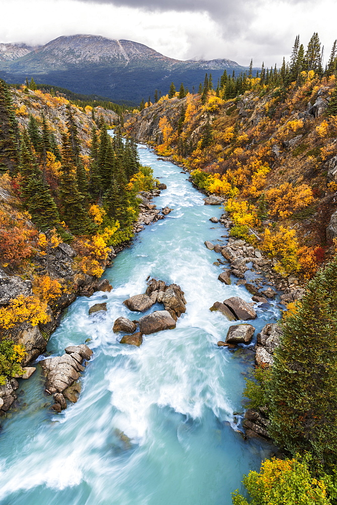 The Tutshi River Canyon As Seen From The Suspension Bridge, British Columbia, Canada, Fall.