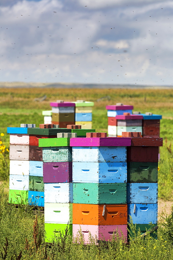 Colourful Stacked Bee Hive Boxes In A Field With Clouds Above, North Of Rolling Hills, Alberta, Canada