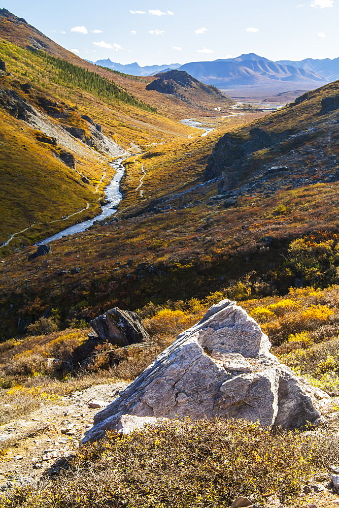 Savage River And The Landscape In The Rocky High Country, Denali National Park And Preserve, Interior Alaska, Alaska, United States Of America