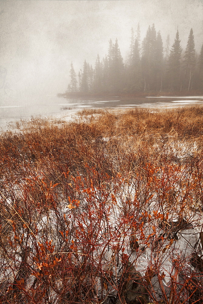 Northern Autumn Landscape In Fog And Ice, Thunder Bay, Ontario, Canada