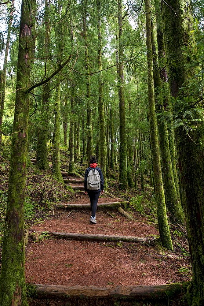 Young Woman Trekking In Sete Cidades, Ponta Delgada, Sao Miguel, Azores, Portugal