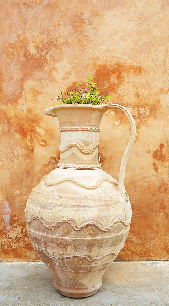 Earthenware Pot And Plant Against Distressed Paint Wall