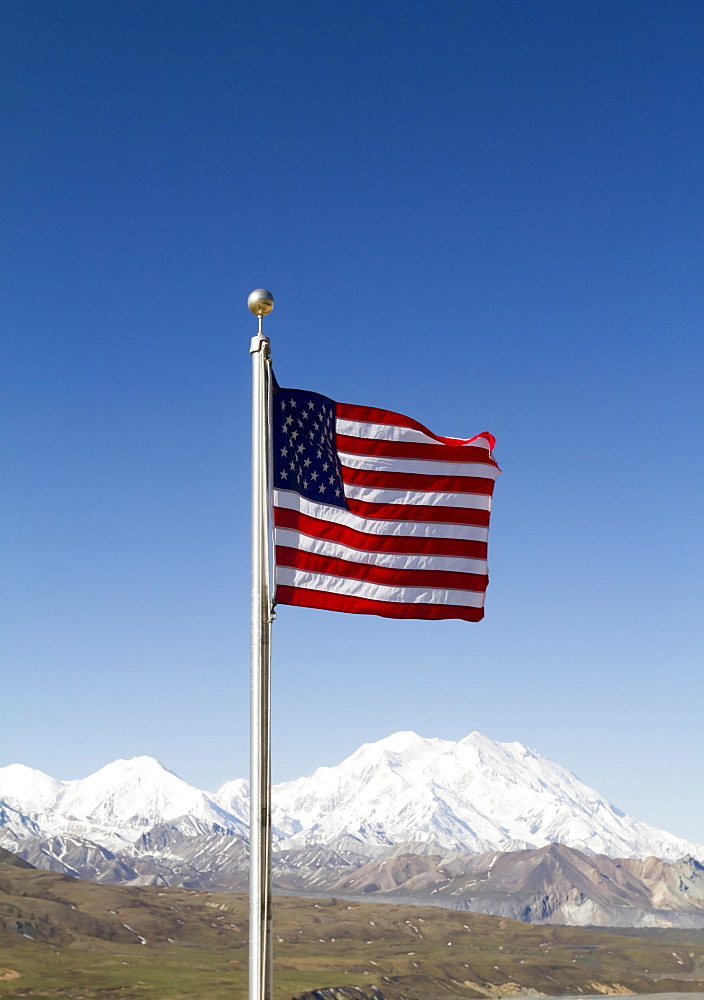 American Flag In Denali National Park With Denali In The Background, Interior Alaska In Summertime, Alaska, United States Of America