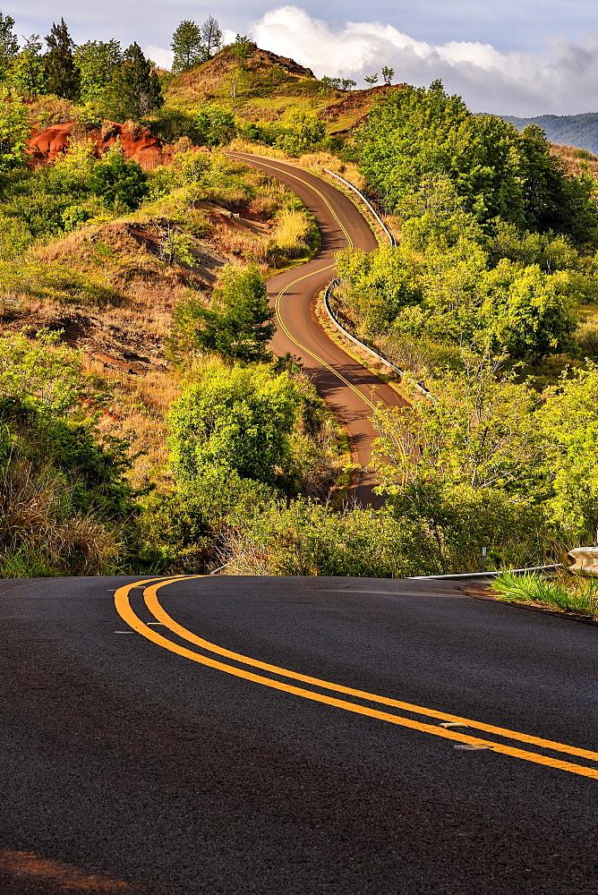 A Winding Road Up Through The Landscape With Lush Vegetation, Waimea, Kauai, Hawaii, United States Of America