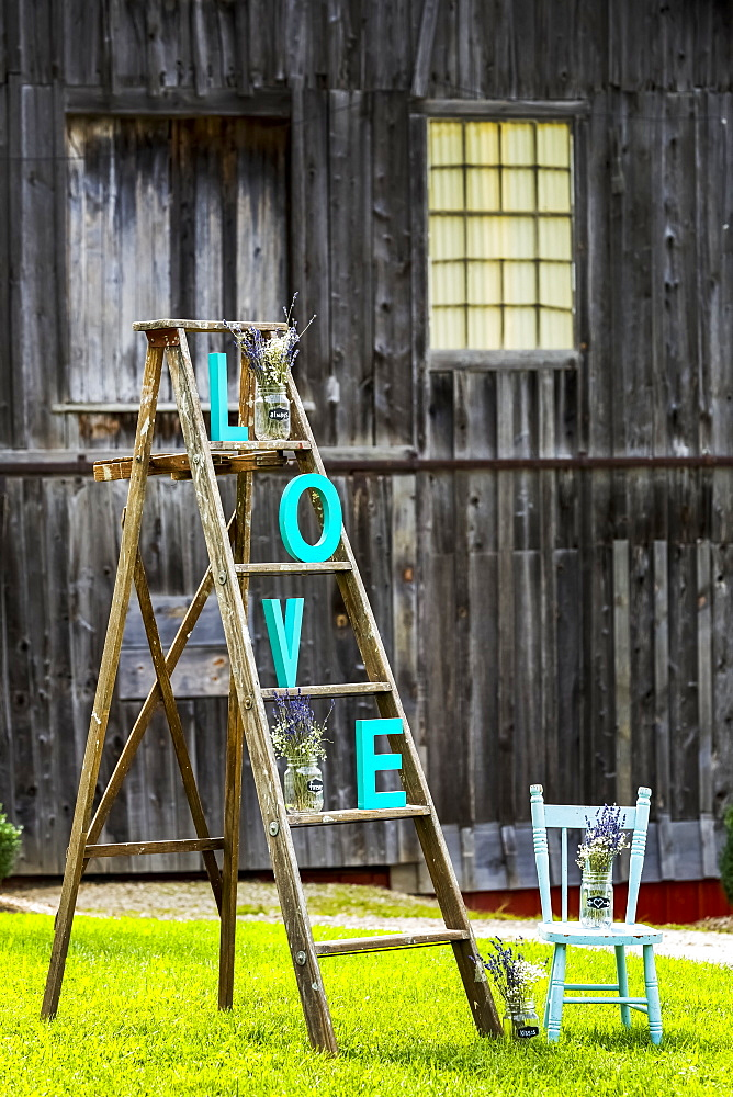 """Wooden Ladder On Grassy Lawn With """"l O V E"""" Letters Placed On Steps With Old Rustic Wooden Barn In The Background And Old Wooden Painted Chair, Walters Fall, Ontario, Canada - 1116-47183"""