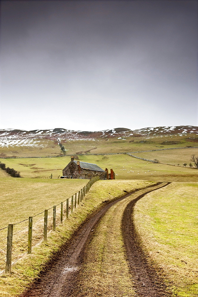 Scottish Borders, Scotland; Tire Tracks Forming A Road Along A Fence With A House Among The Fields