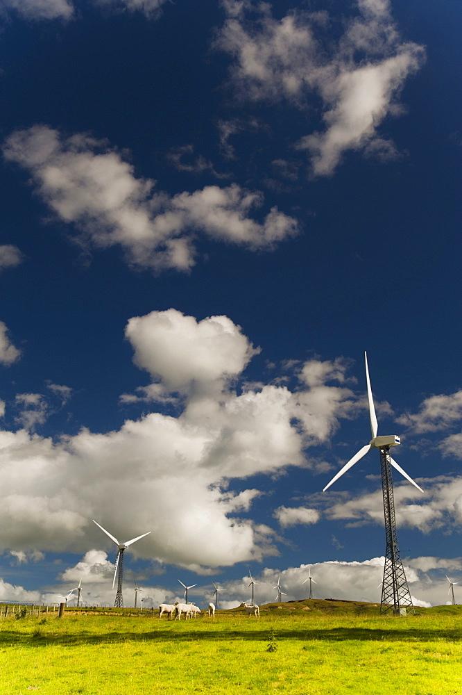 Palmerston North, New Zealand; Wind Turbines