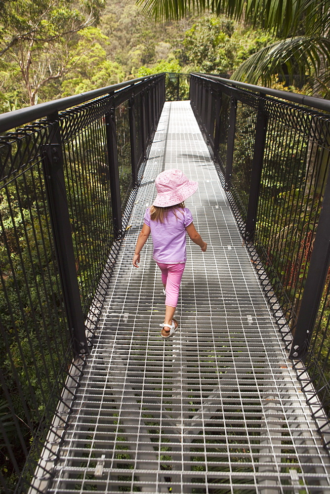 A Young Girl Walking On The Rainforest Skywalk In Tamborine National Park; Gold Coast Hinterland, Queensland, Australia