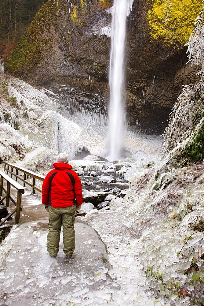 Winter Ice Storm By Latourell Falls; Columbia River Gorge, Oregon, Usa