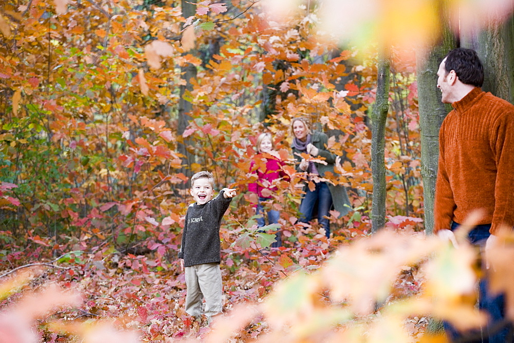 Family of four playing hide and seek in the woods