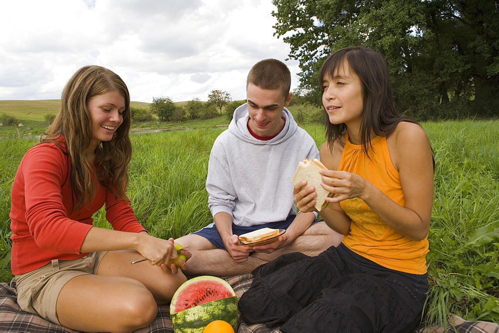 Group of friends eating picnic in field