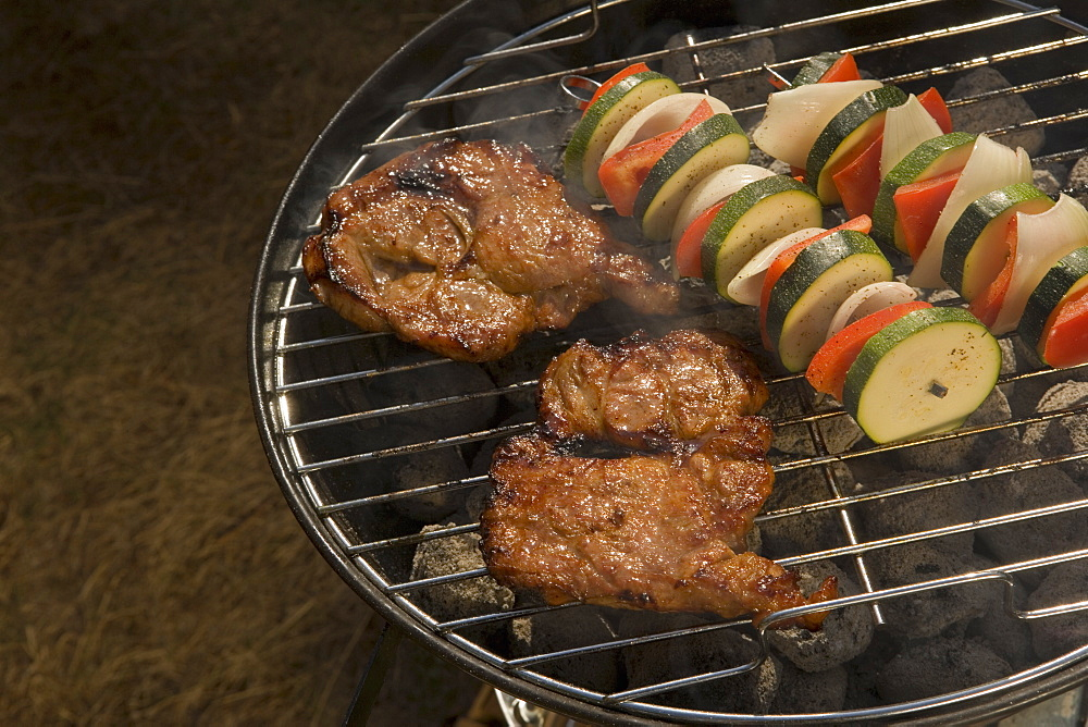 Steak and vegetable skewers on barbeque grill