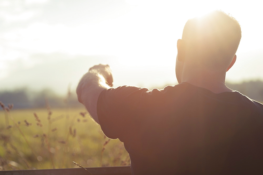 Rear view of man pointing at field on sunny day