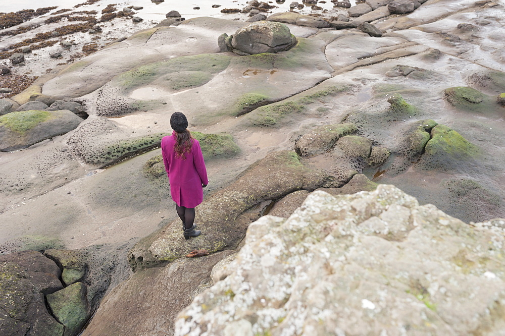 High angle rear view of woman standing on rocky shore