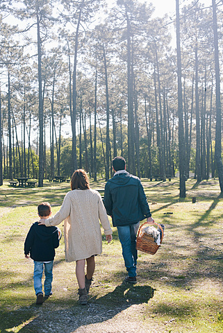 Rear view of family with picnic basket walking in forest