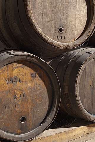 Close-up of wine cellars