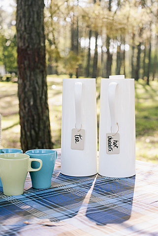Jugs and mugs on table in forest