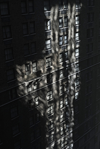 Shadowed building