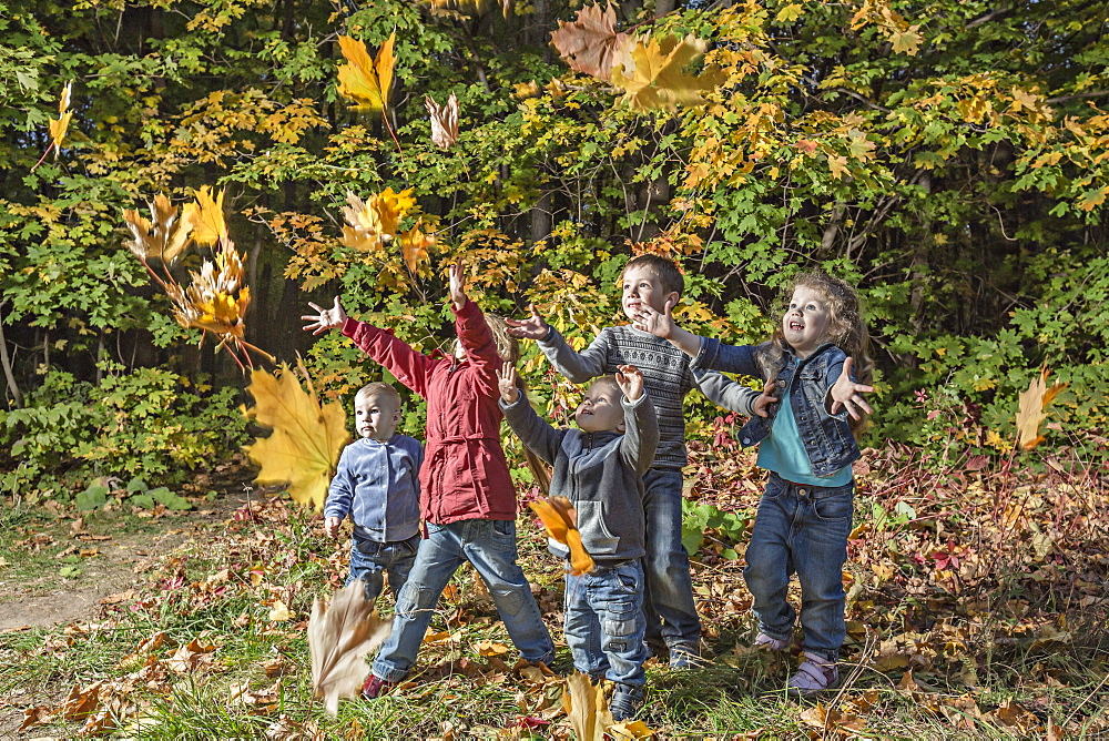 Five kids trying to catching falling autumn leaves