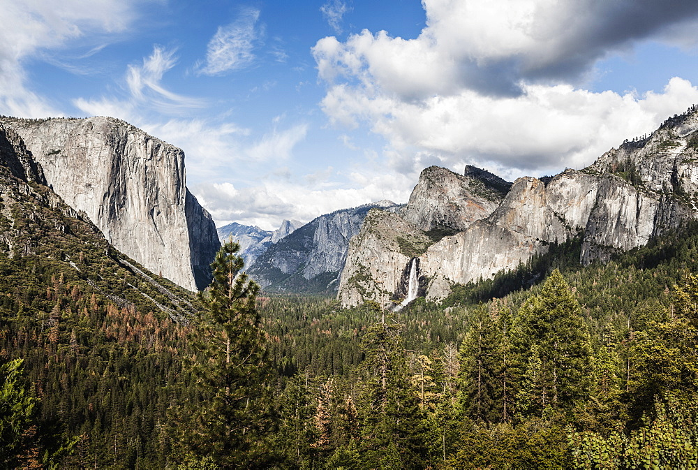 Scenic view of trees growing against rocky mountains, Yosemite National Park, California, USA