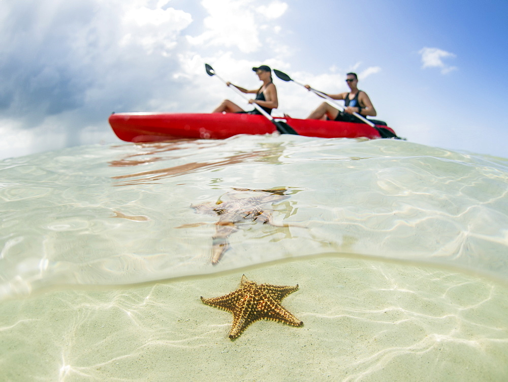 Couple kayaking on ocean at Starfish Beach, Grand Cayman, Cayman Islands