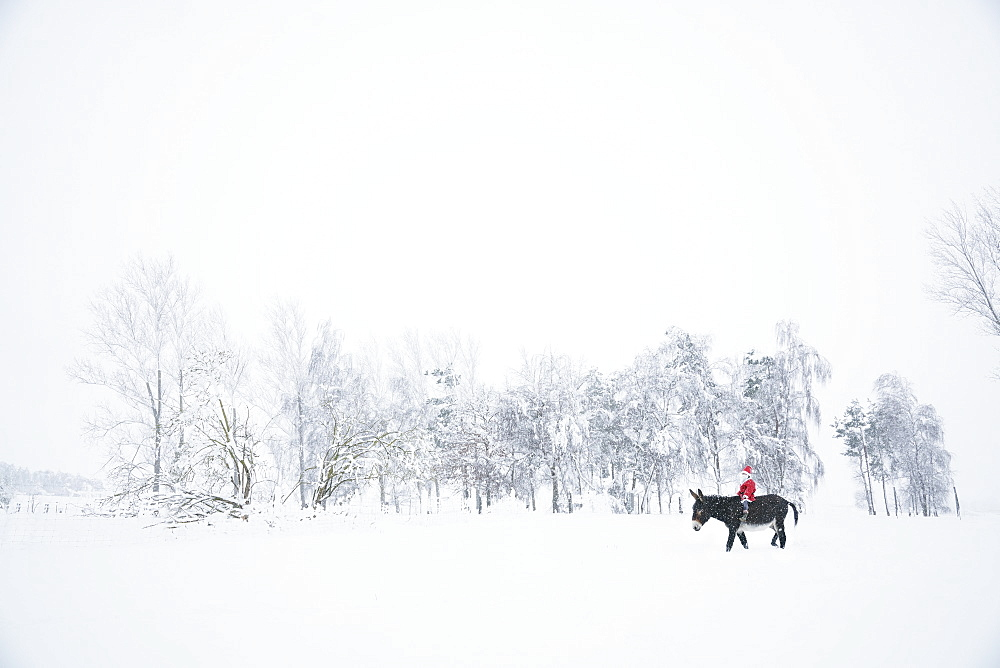 Girl in Santa hat riding donkey in snowy field