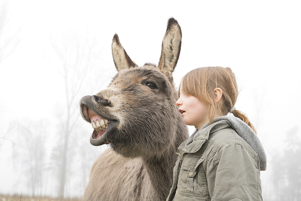 Girl standing next to donkey